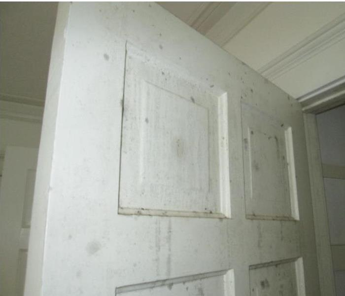 Mold Damage in a Closet