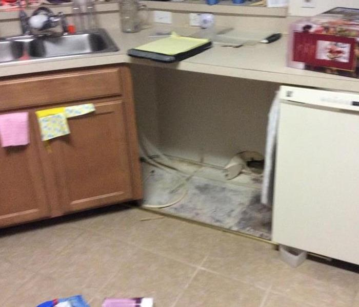 Kitchen cabinet with mold growth