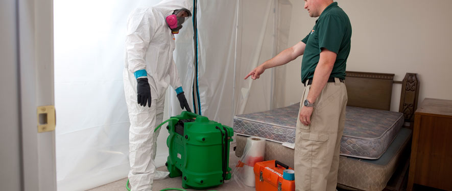 Winter Haven, FL mold removal process